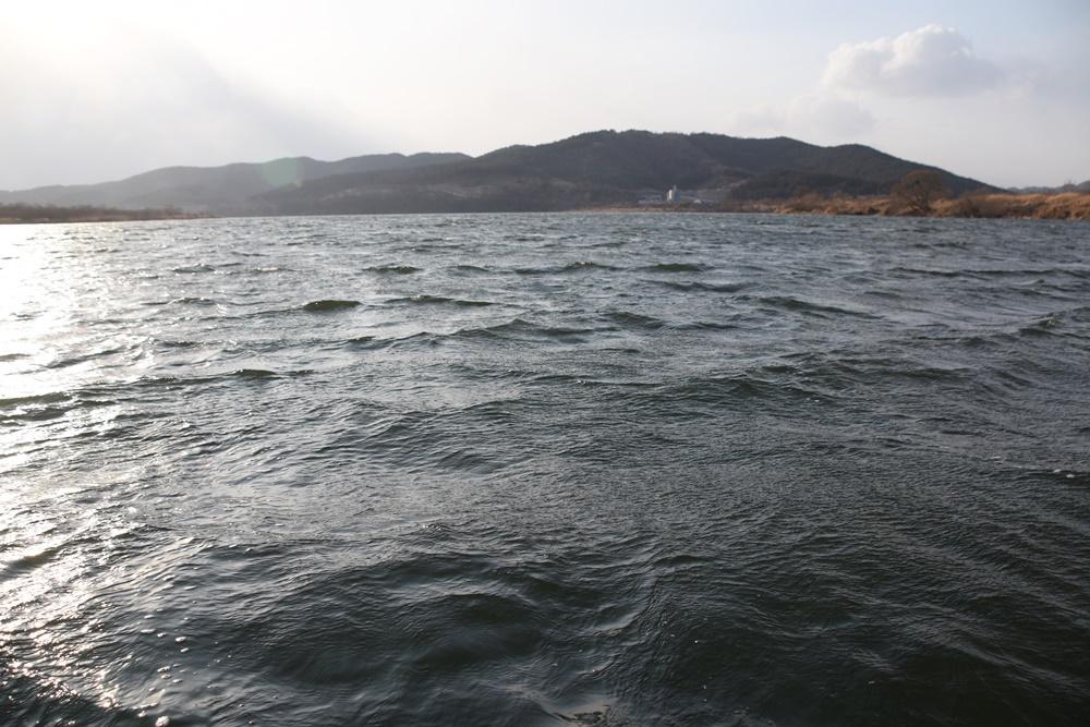 강이 아니라 호수로 변한 낙동강. 전상기 씨 배에서 바라본 낙동강의 모습.