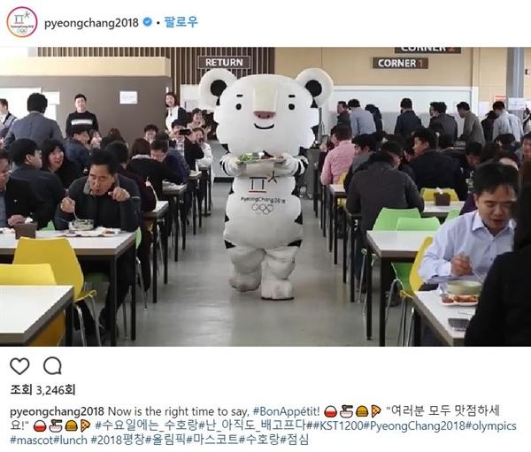 평창동계올림픽조직위 공식 인스타그램에 올라온 수호랑 '혼밥' 영상.