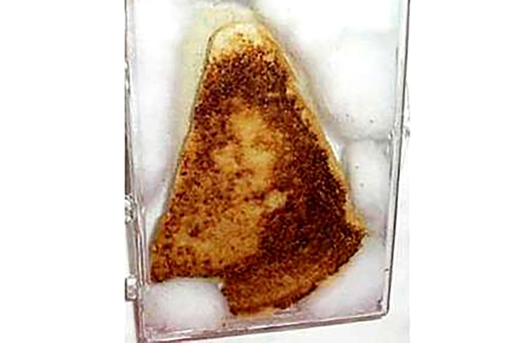 미국에서 약 3천 만 원에 팔린 '성모 마리아' 샌드위치.