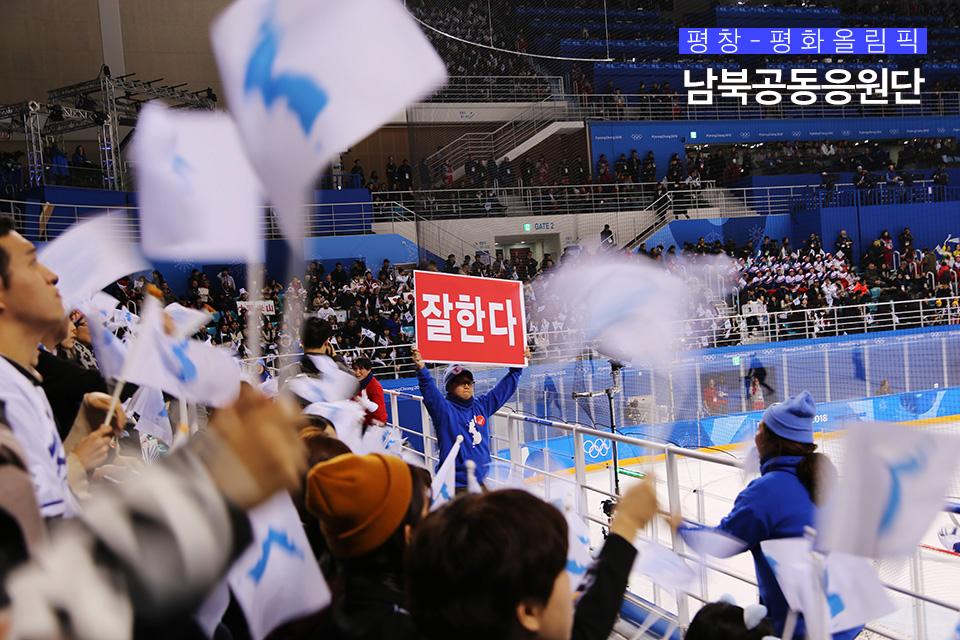 경기중 선수에게 '잘한다' 구호를 외치는 남북공동응원단과 시민들