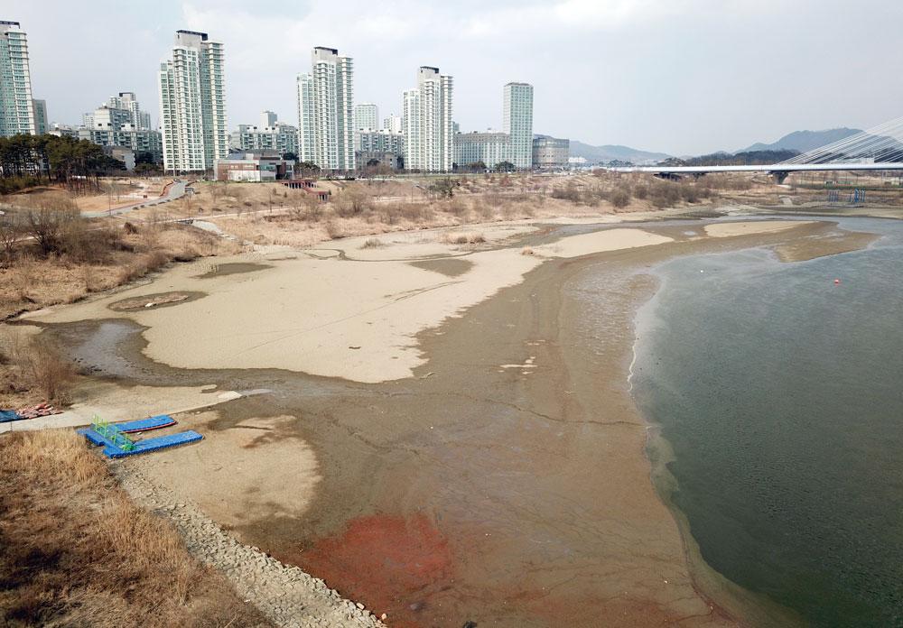 한국수자원공사 세종보 관리사무실 앞에는 시커먼 펄밭이 잔뜩 쌓였다.