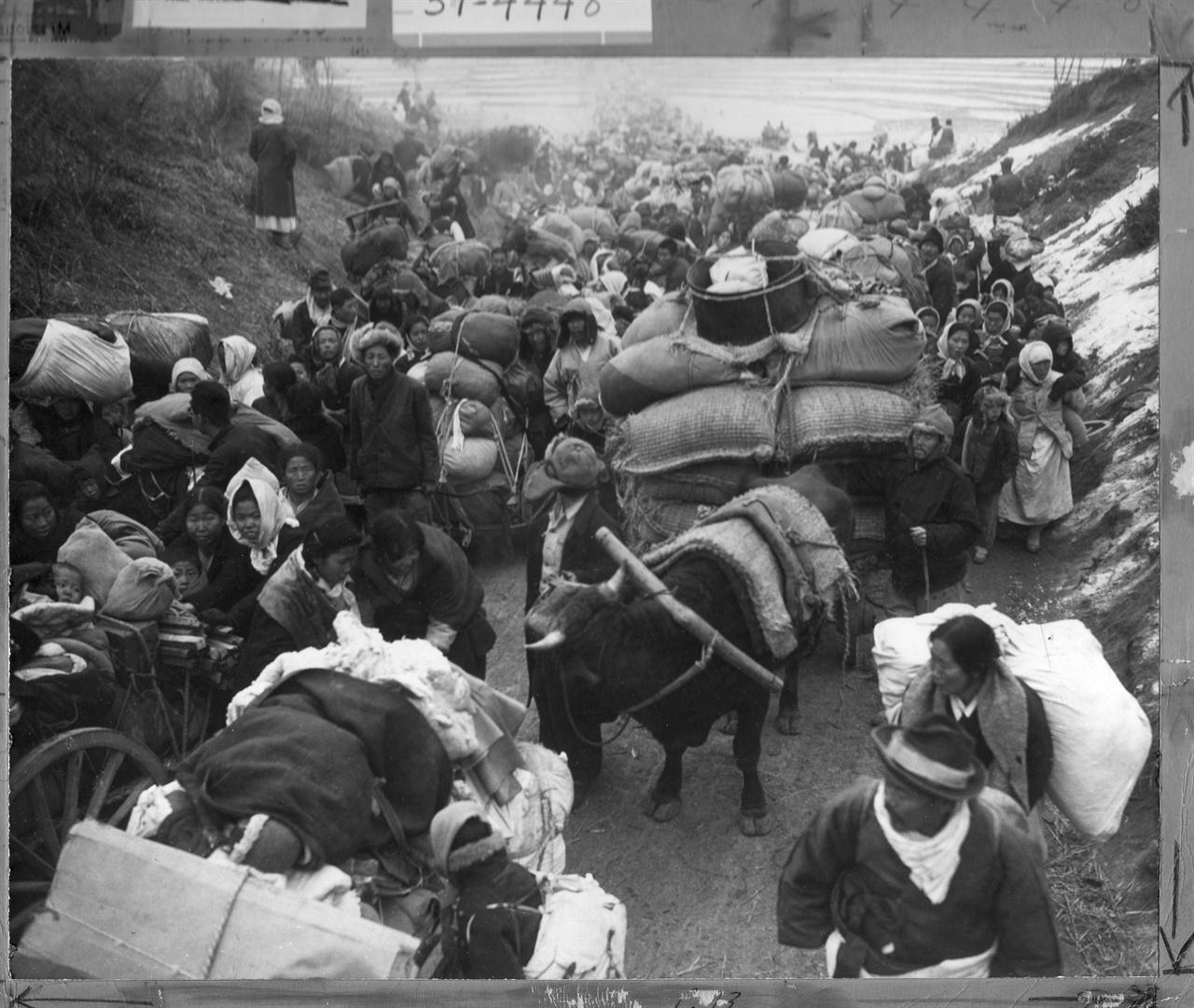 1951. 1. 1.4 후퇴 피란민 행렬로 고갯길에서 사람과 소달구지가 뒤섞인 채 아수라장이 되었다.
