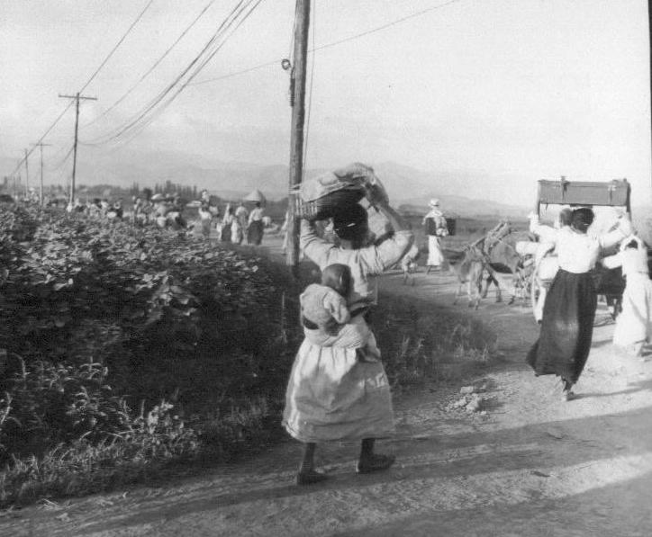 1950. 8. 20. 대구 근교, 아이를 업고 가재도구를 머리에 인 피란민.