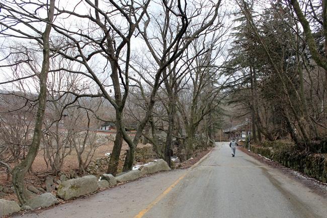 미륵성지 김제 모악산 금산사 가는 길 위에서 '나'를 돌아 봅니다.