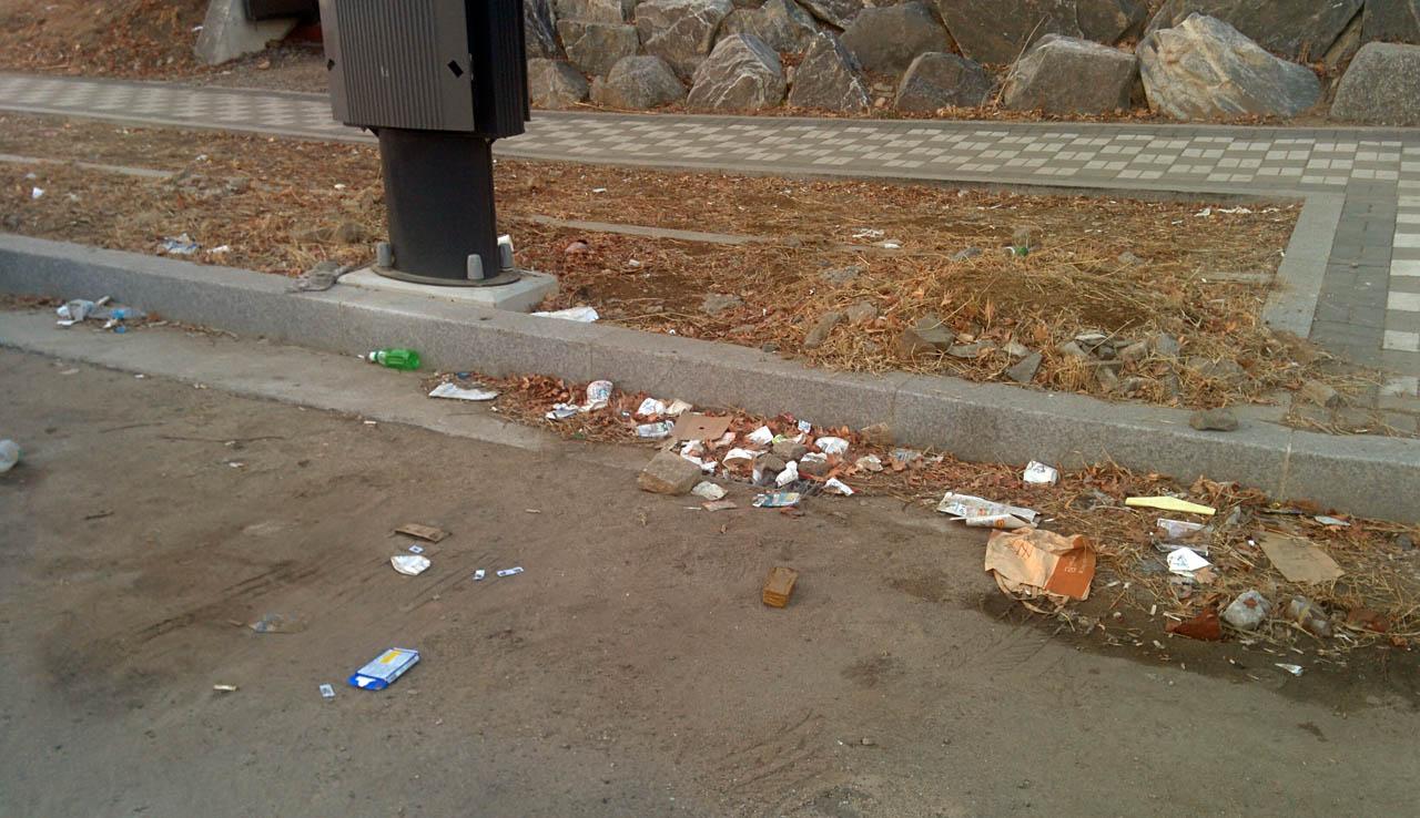 걸핏하면 쓰레기 더미를 이루는 곳 주변들에 쓰레기가 흩어져 있다. 이 쓰레기들은 비에 쓸려 하천을 통해 바다로 가기도 할 것이다.