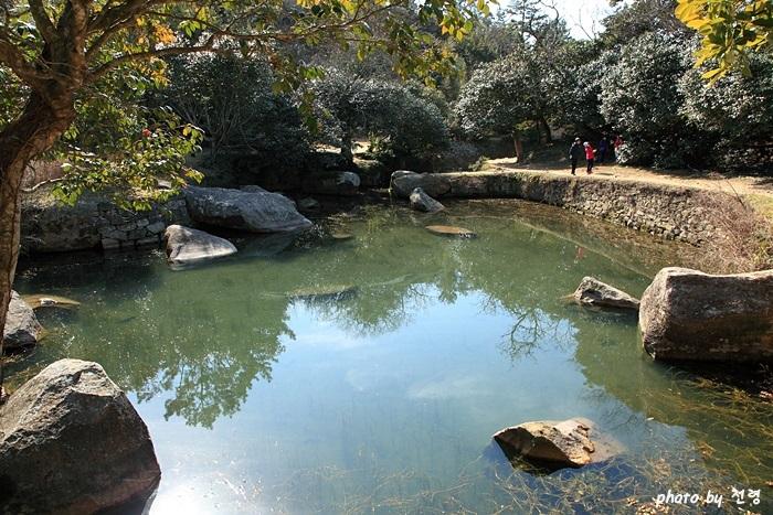 세연정의 제방과 돌출된 수제 풍경을 위한 인공물이기도 하지만 호우 때 유속을 떨어뜨리기 위한 과학적인 구조물이기도 하다.