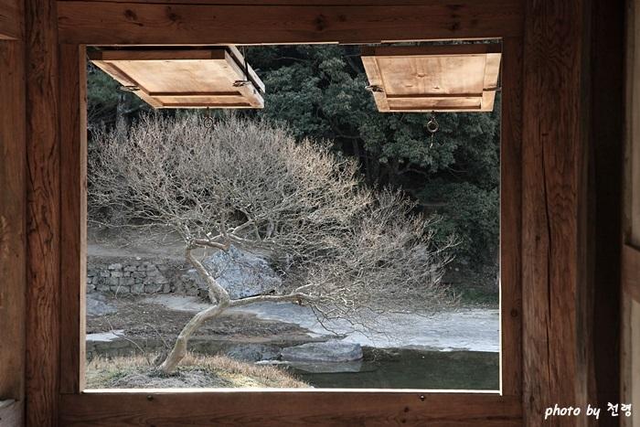 세연정 세연정 창으로 들어온 계담 풍경