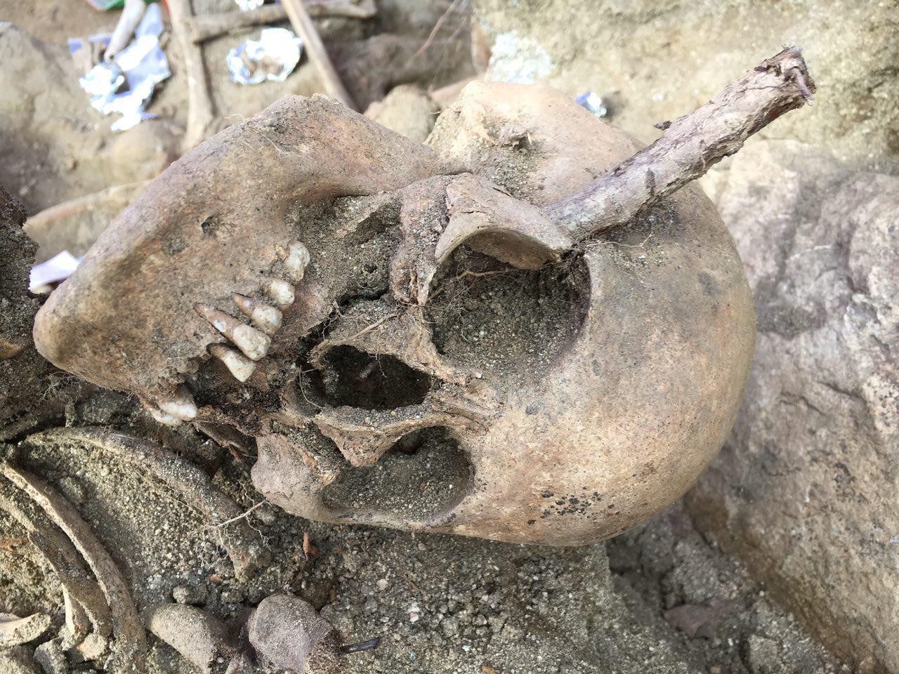 아산시 배방면 중리마을 뒷산 폐금광 유해발굴 현장에서 발굴된 희생자 유해. 지금까지 40여구를 발굴했지만 아직 폐금광 입구가 드러나지 않고 있다.