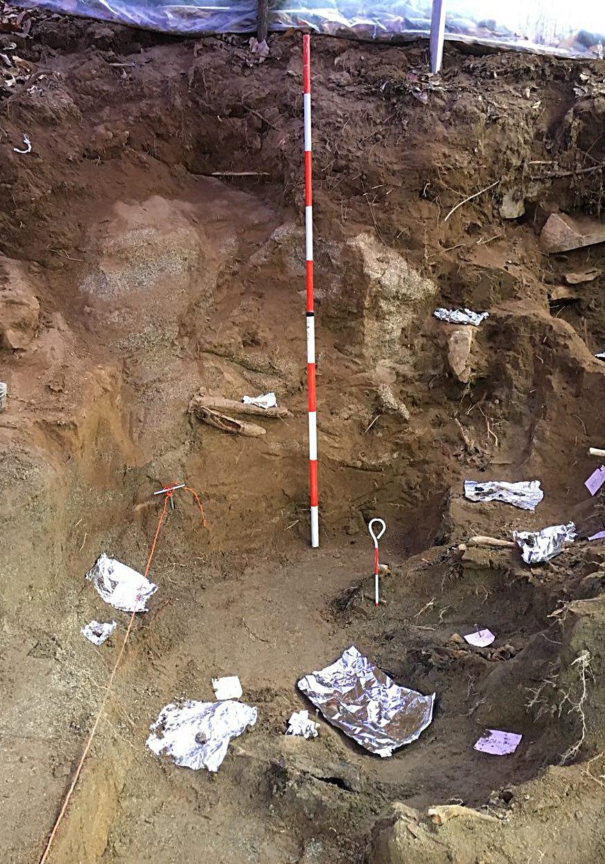 표면에서 1m 60cm를 파 내려갔지만, 아직 바닥이 어디인지 모르는 상황이다. 유해가 좁은 면적에 층층이 쌓여 있기 때문이다.