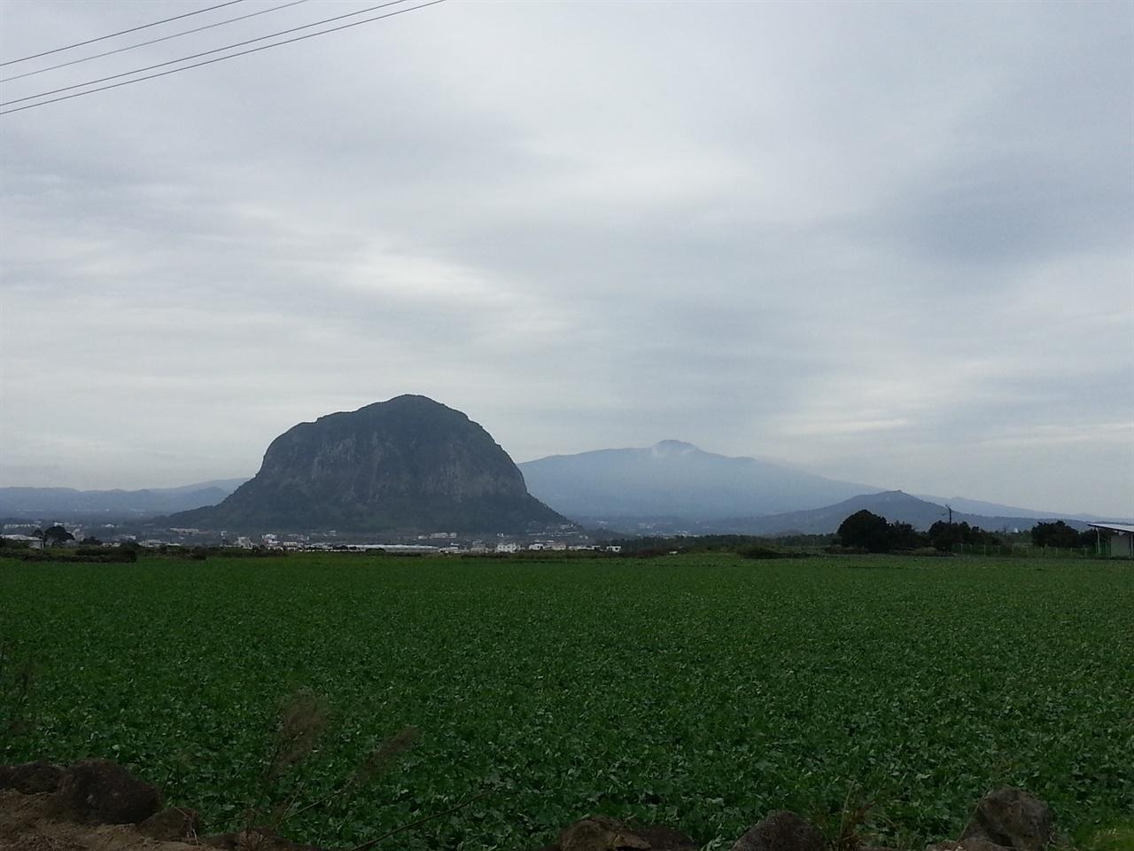산방산이 있는 풍경