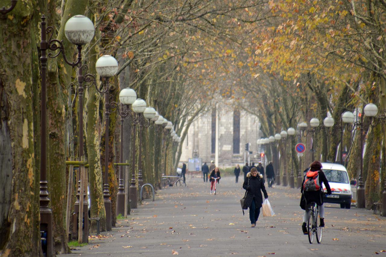 베랑제 대로 플라타너스가 우거진 이 대로를 투르 시민들과 함께 걸었다.