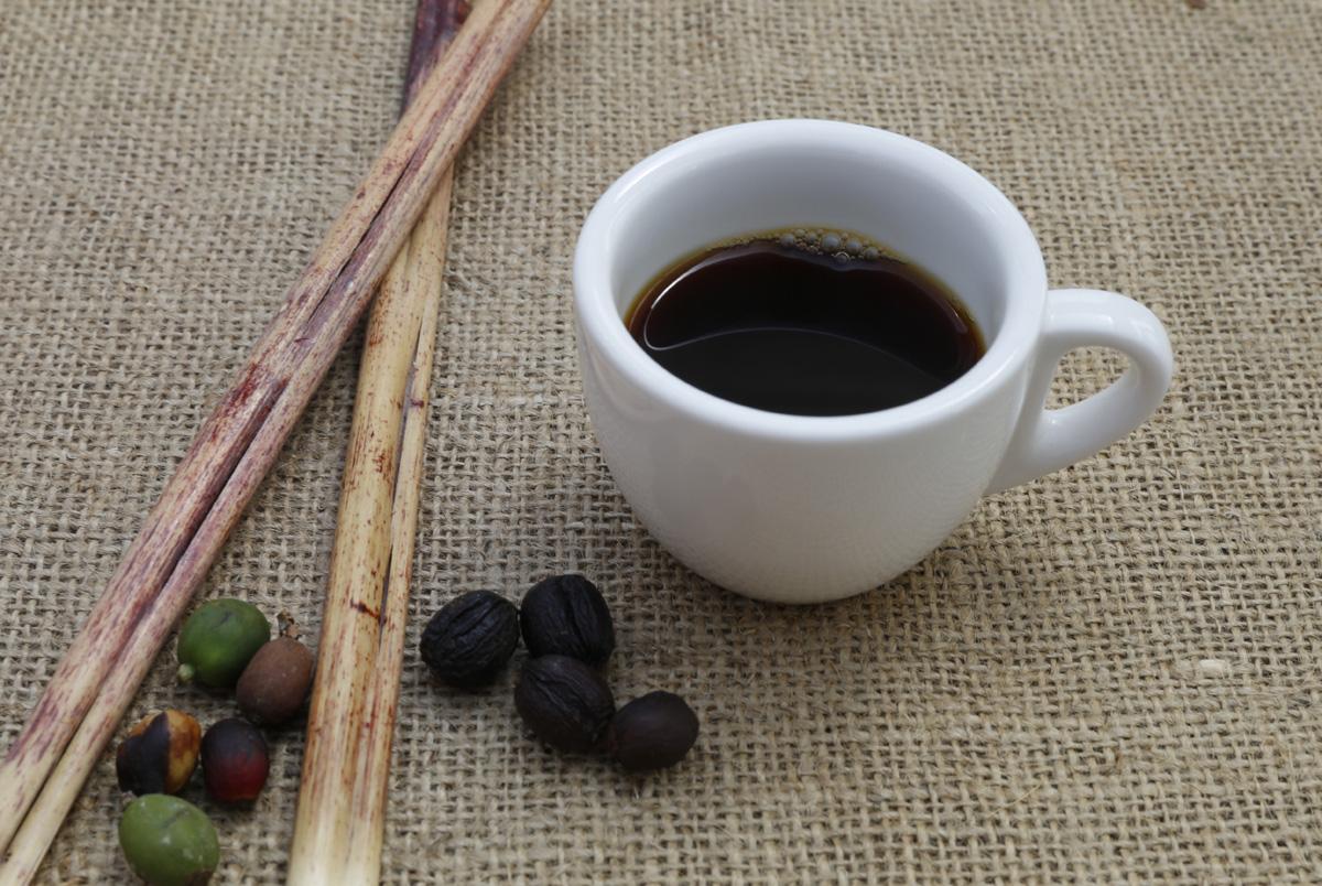 커피가 국민음료로 자리잡았다. 커피전문점도 기하급수적으로 늘었다. 커피시장의 규모도 가파르게 커졌다. 담양커피농장에서 딴 열매를 말리고 볶아서 내린 커피다.