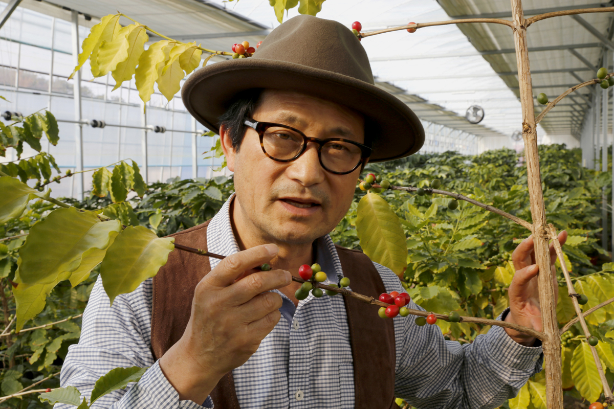 커피나무에 대해 설명해 주는 임영주 담양커피농장 대표. 임 대표는 사진기자 일을 그만 두고 고향으로 내려와 커피나무를 재배하며 인생 2모작을 짓고 있다.