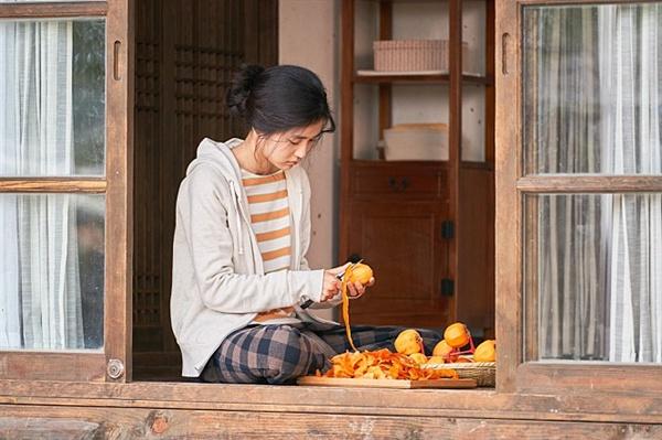 혜원은 잠시 쉴 곳을 찾아 대학 입학 후 오랫동안 비워두었던 시골집으로 내려온다. 그리고 이곳에서 사계절을 보낸다.