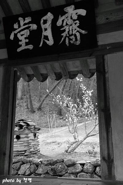제월당 송나라 황정견이 주무숙의 사람됨을 '흉회쇄락여광풍제월胸懷灑落如光風霽月'이라고 비유한 데서 따왔다.