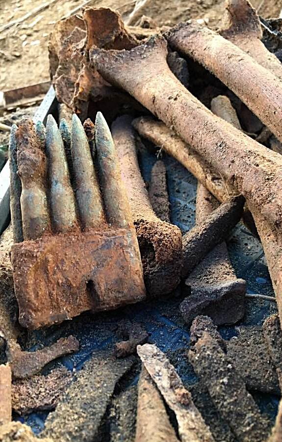 발굴 24일 째. 사용용하지 않은 M1 총알의 8발 클립이 통째로 발굴됐다.
