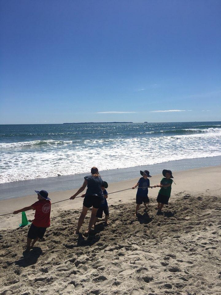 학교 근처 바닷가에서 즐기는 미니운동회. 바다가 친숙한 타우랑가 아이들