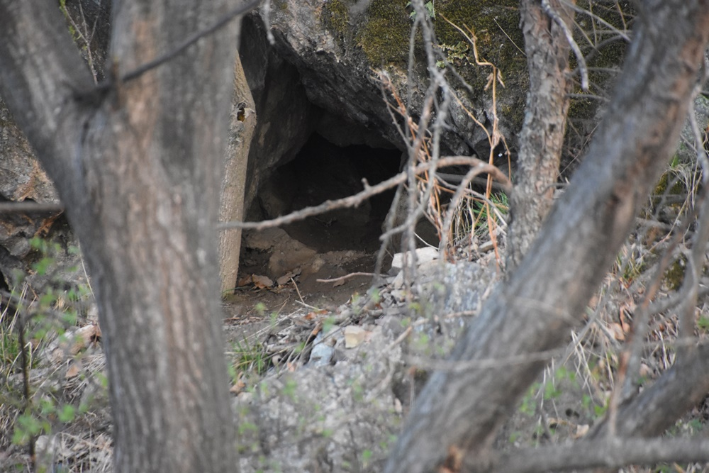 천연기념물이자 멸종위기 야생동물1급종인 수달 집으로 추정되는 작은 동굴이다.