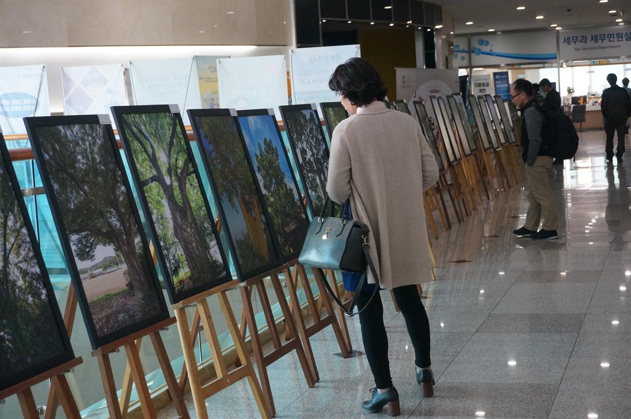 이천시청 2층 로비에서 시민들이 이천의 노거수 사진을 관람하고 있다.