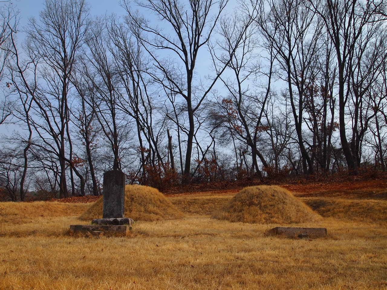 경선군과 경완군의 묘 소현세자와 민회빈 강씨의 아들인 경선군과 경완군의 묘, 지금은 군부대에 둘러싸여 있다.