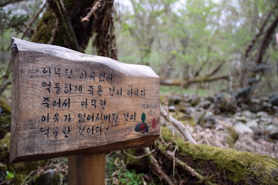 아무런 이유없이 이덕구 산전에 강정평화기행단이 김경훈 시인의 시 '아무런 이유 없이' 의 한 구절을 나무 팻말에 새겨 놓았다.