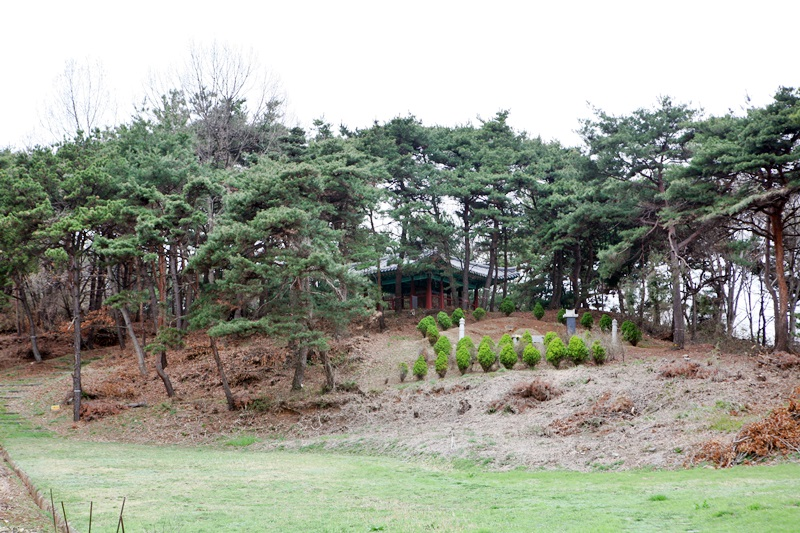 화전리 뒷산 아래쪽에서 바라본 미륵당이라 불리는 화전리 됫산에 자리하고 있는 사면석조불상의 전각