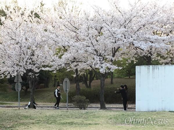 12일 안산의 모습들. 세월호 4주기를 앞두고.