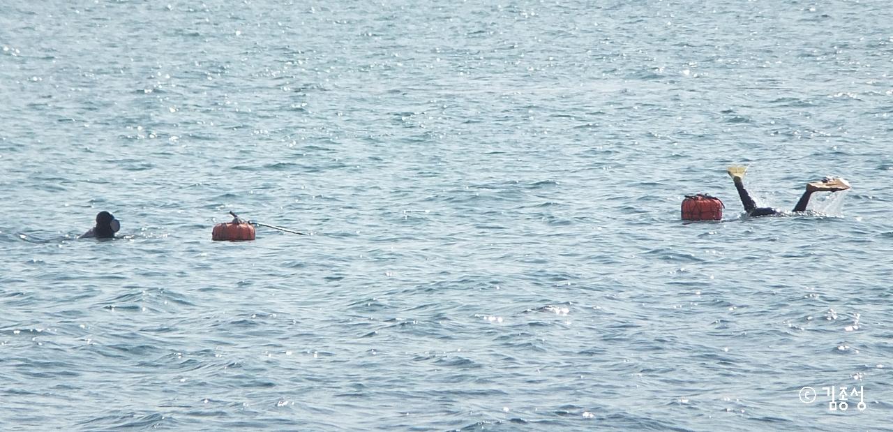 잠수를 하면서 내는 '숨비소리'가 들려오는 것 같다.