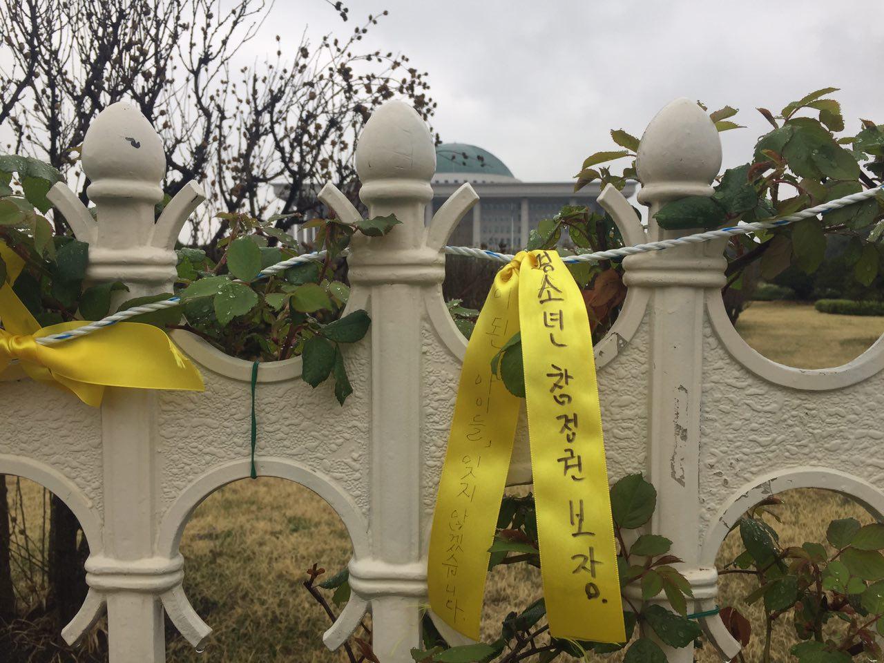 국회 담장에 걸린 세월호 노란리본