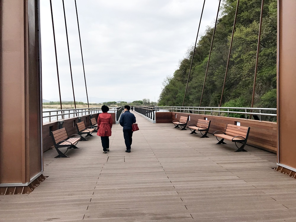 이른바 생태탐방로란 이름을 단 관광도로로 아직 미완공 상태임에도 불구하고 관광객들이 오가고 있다.