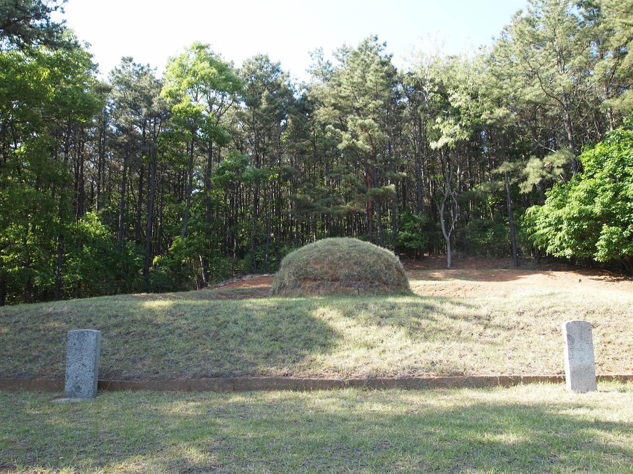 강화 곤릉 전면에서 바라본 곤릉의 모습, 발굴조사를 통해 석인상 4기와 석수 1기의 머리 부분이 확인되었다.