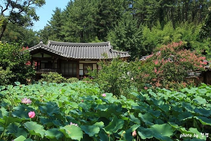 별당 정원 하엽정  사랑채 마당에서 작은 일각문을 들어서면 네 칸의 하엽정이다.
