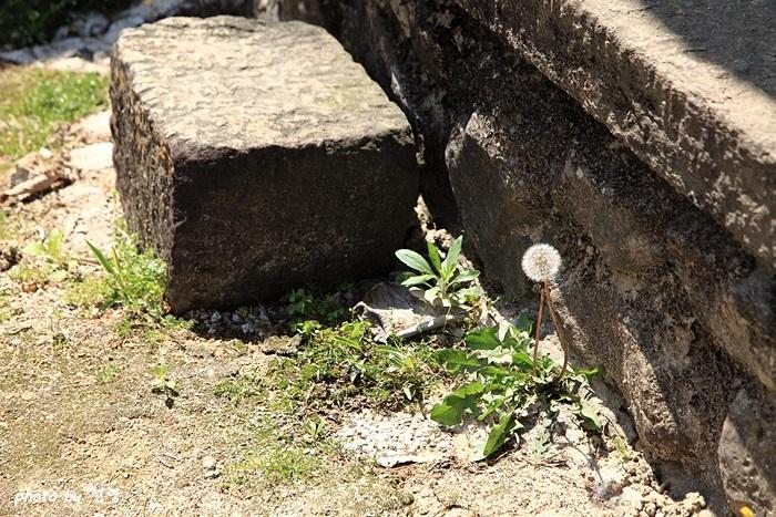 삼가헌 삼가헌의 유래는 박팽년에서 비롯되었다고 볼 수 있다.