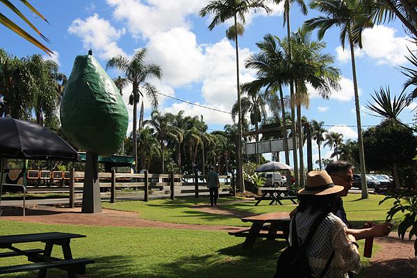 '열대과일세계' 농장 입구 모습