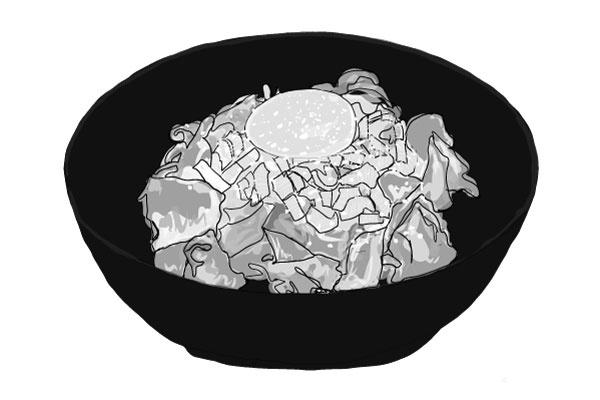 정정학과 일본식 소고기덮밥