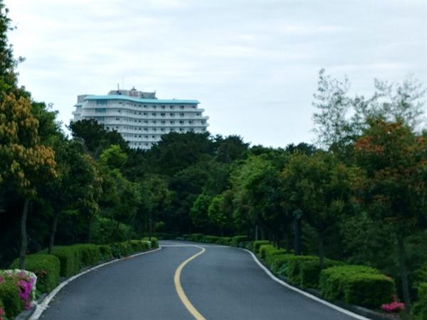 인도가 없는 위험천만한 진입도로로 체면 구겨지는 특급 서귀포 칼 호텔.