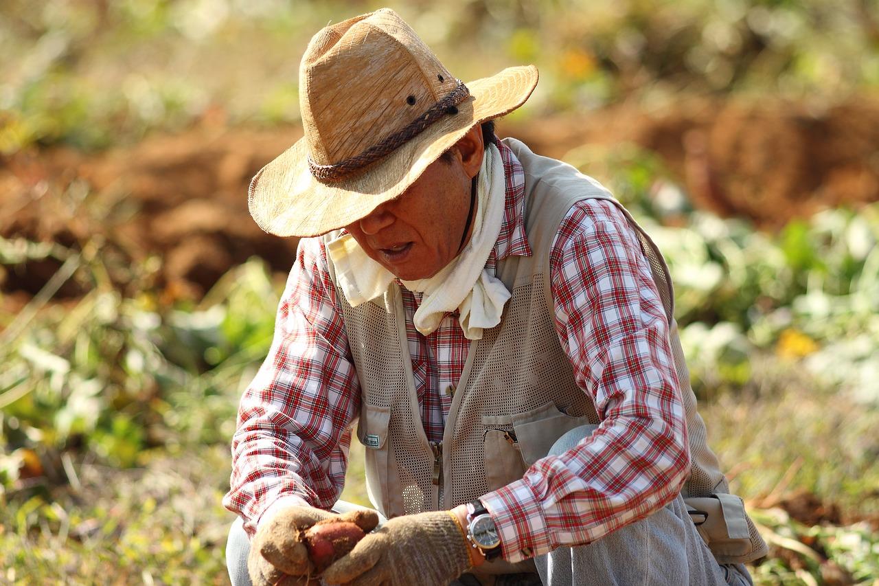 농어업인들 역시 재해 노출 빈도가 높다