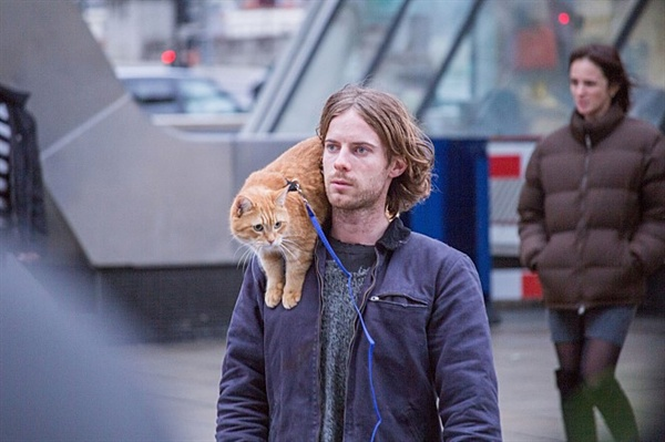 영화 <내 어깨 위 고양이, 밥>의 고양이 밥과 제임스 역을 맡은 루크 트레더웨이.