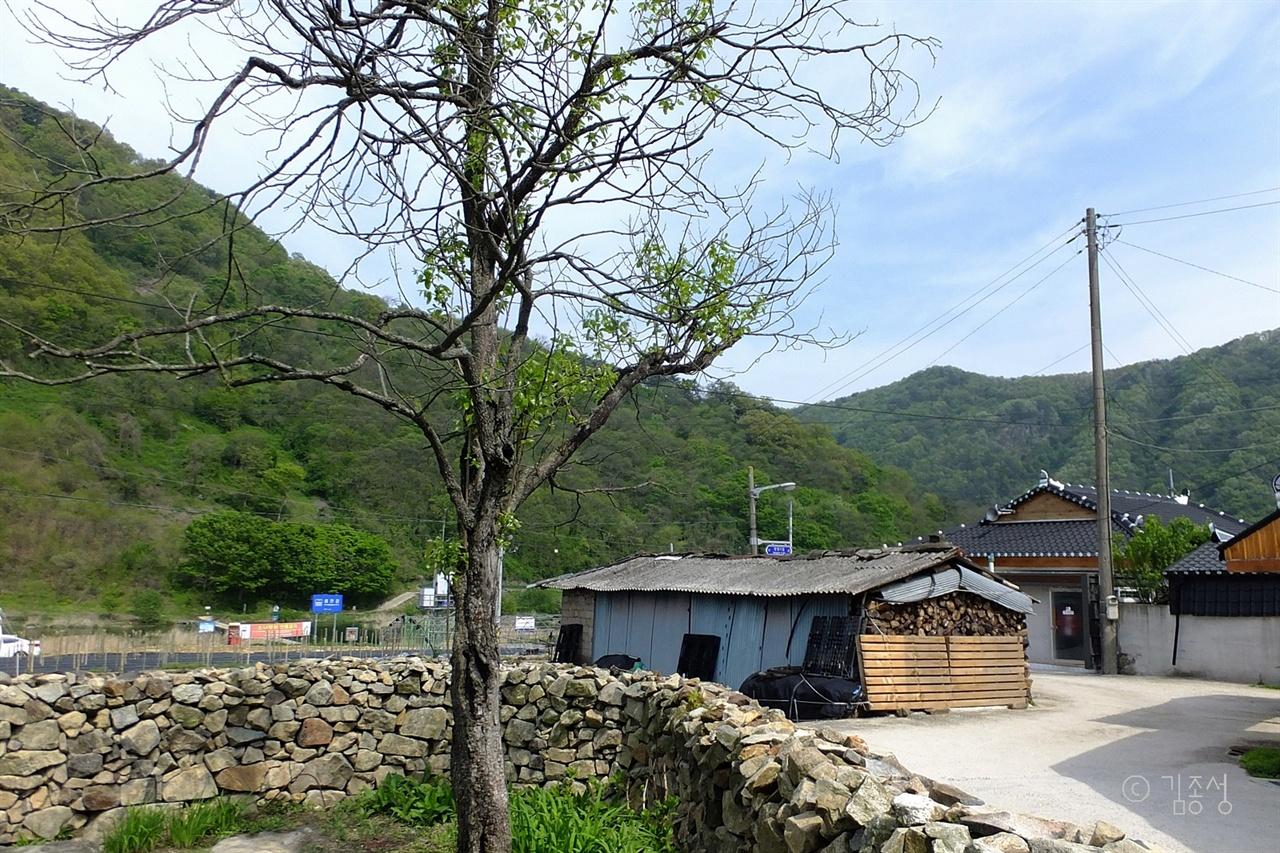 낮고 소박한 마을 풍경.