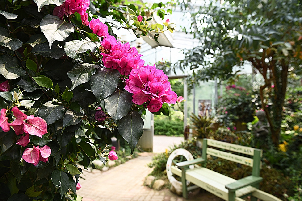 허브나라 유리온실  허브나라 내부 공간으로 들어가는 입구 격인 유리온실. 다양한 꽃들이 사계절 피고 진다.