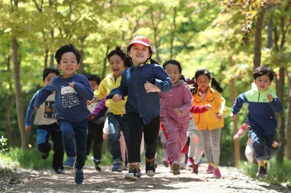어린이날을 하루 앞둔 4일 오후 세종시 원수산 파랑새유아숲체험원에서 어린이들이 숲길을 달리고 있다.