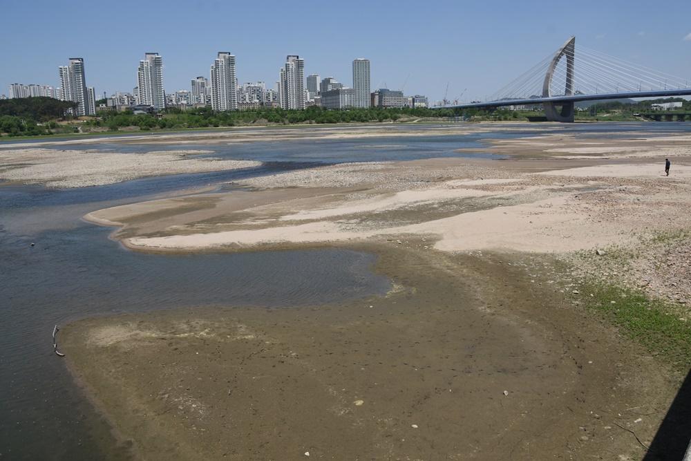 수문을 연 세종보 상류에 거대한 모래톱이 드러나면서 맑은 강물이 흐르고 있다