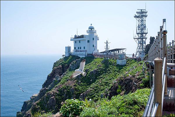 독도에는 대한민국 영토를 지키는 늘름한 독도경비대원들이 있다