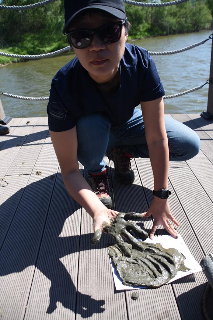 백제보 상류 저니토 -검게 썩은 모습을 그대로 유지하고 있다