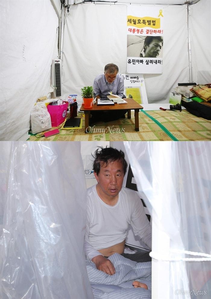2014년 8월 문재인 새정치민주연합의원이 서울 광화문 단식농성장에서 8일째 단식을 이어 가고 있는 모습 (위) 2017년 자유한국당 김성태 원내대표가 서울 여의도 국회 본관 앞에서 7일째 노숙단식 농성을 이어가고 있는 모습 (아래)