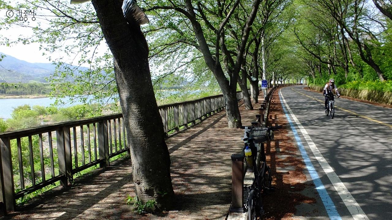 벚나무가 시원한 그늘을 드리워주는 섬진강변길.