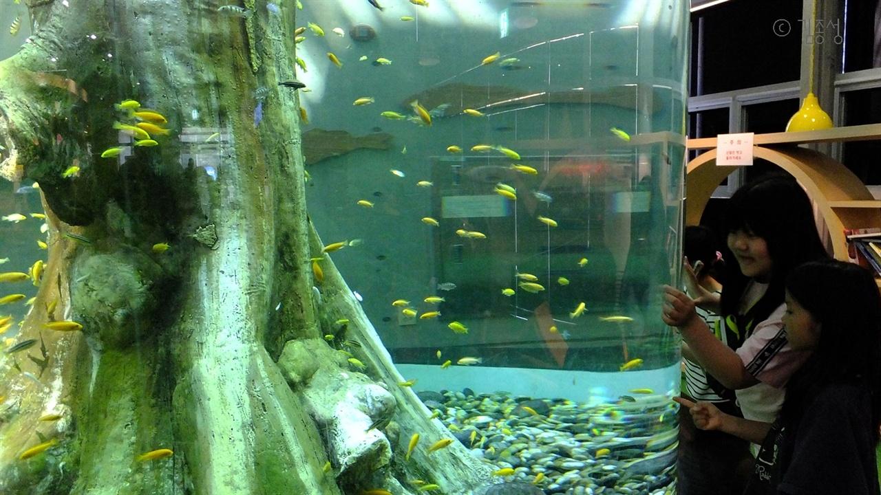 흥미로운 볼거리가 많은 섬진강 어류 생태관.