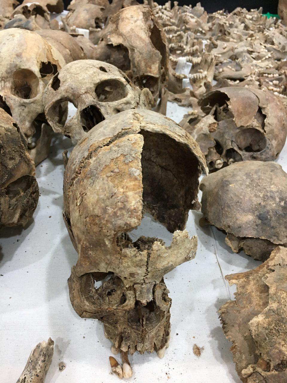 아산 배방에서 학살된 희생자 유해