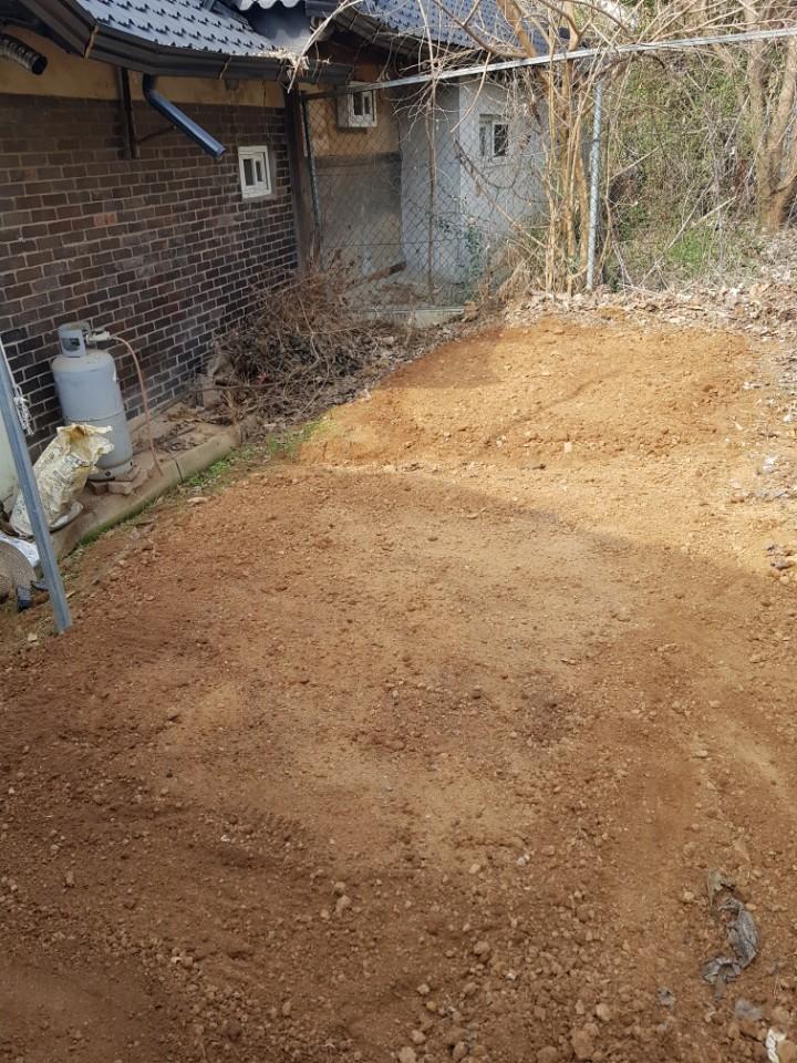 위쪽이 씨앗을 흩뿌린 '자연 밭', 아래쪽이 씨앗을 줄지어 심은 '인간 밭'