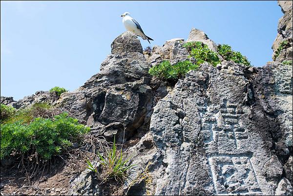 갈매기가 앉아있는 바위 아래 '한국'이라고 써진 바위가 보인다